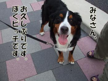 2011_09100025.jpg
