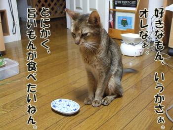 2011_09110018a.jpg