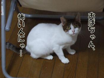 2011_09260043.jpg