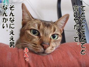 hun_20110127235359.jpg