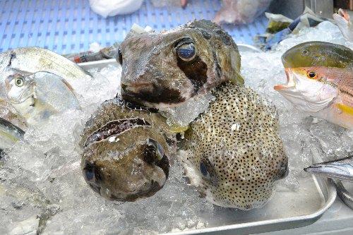 2011.03.03沖縄①05
