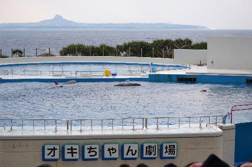 2011.03.04沖縄②14