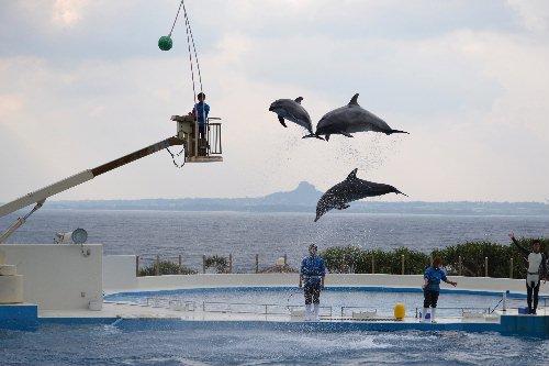 2011.03.04沖縄②16