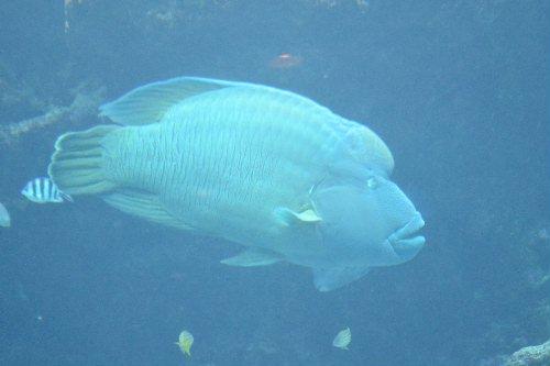 2011.03.04沖縄②19