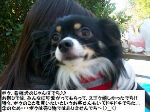 100_2220.jpg