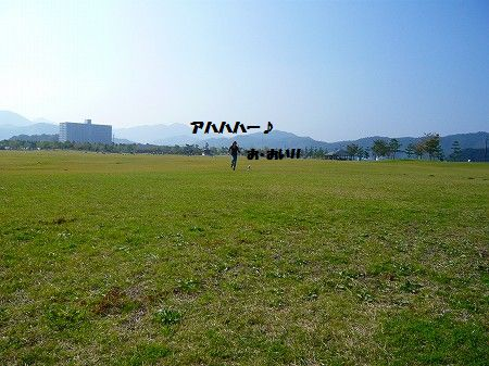 s-P1020592.jpg