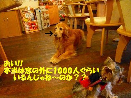 s-P1020709.jpg
