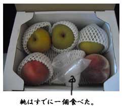 kudamono110905.jpg