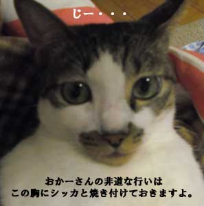 omi110920_4.jpg