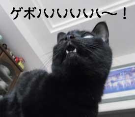omuomusanhalloween11_7.jpg