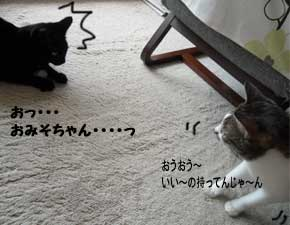 onigirisan110926.jpg