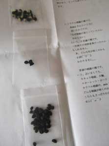 tokumasan111013_3.jpg