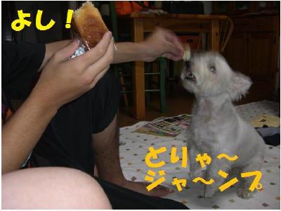パンくれ4