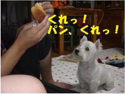 パンくれ2