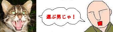 65c6cad55d92374667_20091204161537.jpg