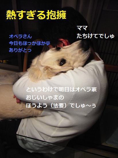 法要?抱擁?