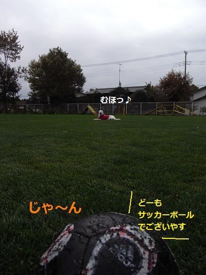 サッカーします