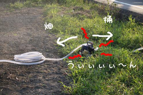 2009_09_24_03.jpg