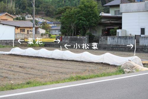 2009_9_17_1.jpg