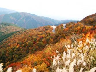 scenery_autumn006S.jpg