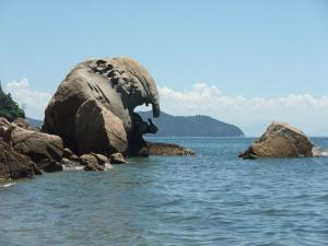 天然記念物 象岩