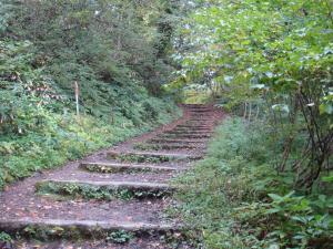 山道を歩いて圓流院を目指します