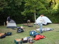 男性陣は各自のテントを建てていきます