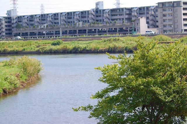 鶴見川は川幅がとても広いです!