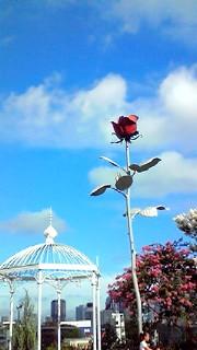 8月4日 ヒルズ薔薇のオブジェ