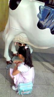 8月4日 牛さん&まりか
