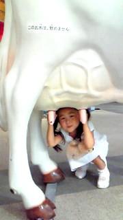 8月4日 牛さん乳搾り
