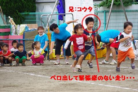 IMGP0307.jpg