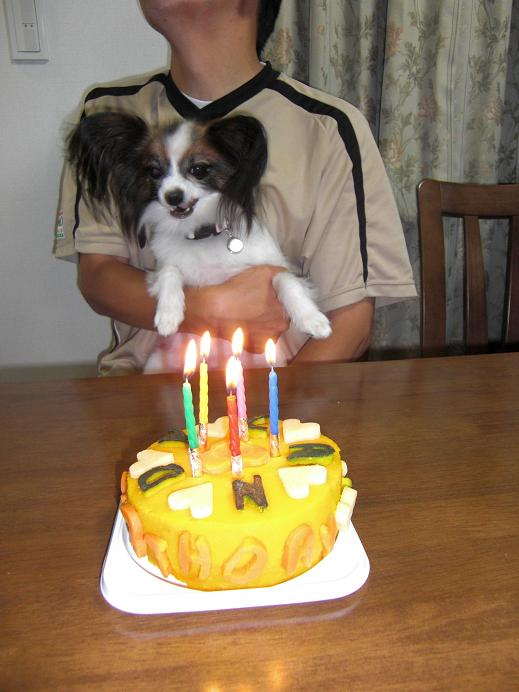 2009_0923candy5歳の誕生日0042