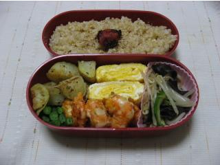 20100130お弁当