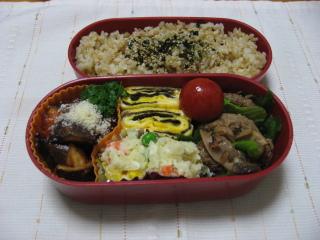 20100629お弁当