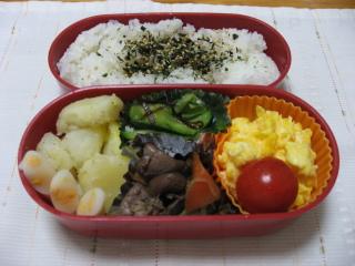 20100630お弁当