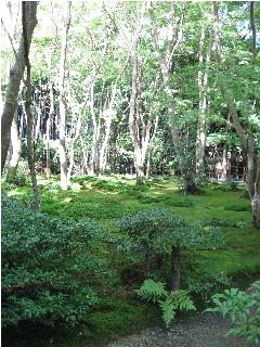 20101010京都祇王寺