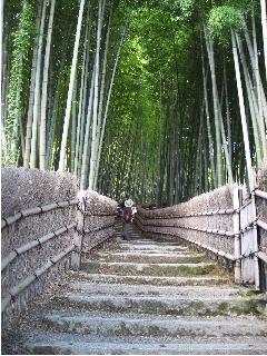 20101010京都あだし野念仏寺