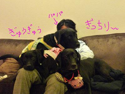 三人の子供達とおとうブログ