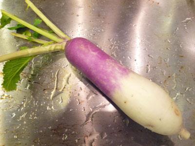 イタリアン野菜かぶ