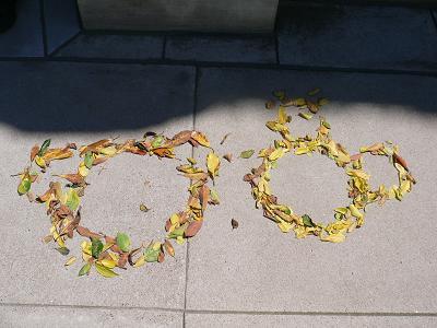 ダッフィートミッキー落ち葉