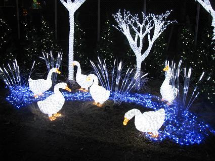 OSAKA光のルネッサンス2009 その4