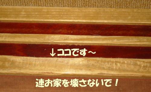 182-8289_IMG.jpg