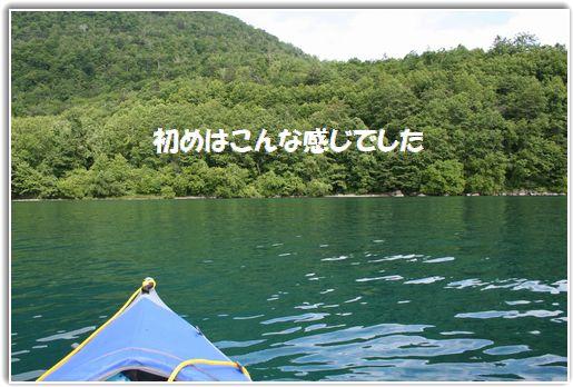 緑の支笏湖