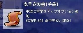 Maple100330_045702.jpg