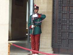 5jul2010 パレスの衛兵