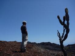 20aug2010 チコ火山 荒涼とした大地にサボテンだけが生える