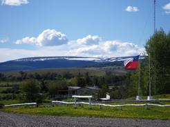 10nov2010 チリ側国境 タンポポが満開