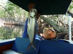 24jan2011 おっちゃんがデカイのを釣り上げた