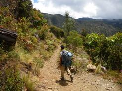 4mar2011 整備された登山道をゆく